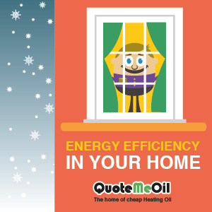 Energy Efficiency In Your Home